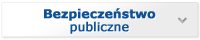 Bezpieczeństwo Publiczne