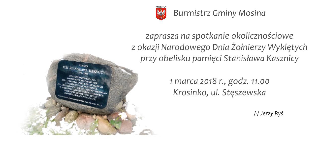 Uroczystości w Krosinku