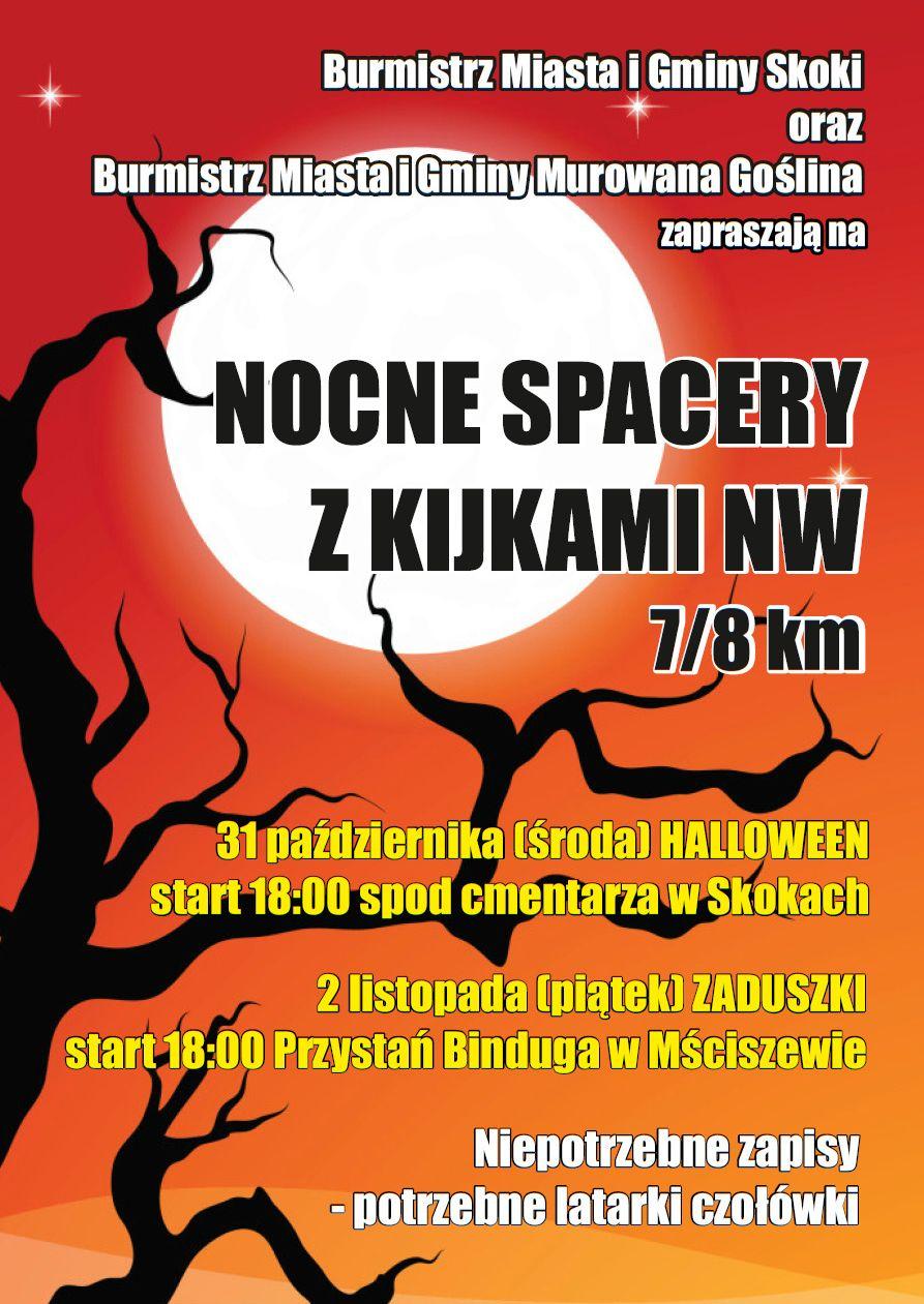 Nocny Spacer z Kijkami