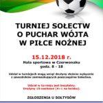 Turniej piłki nożnej w Czerwonaku