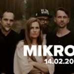 Plakat na koncert Mikromusic na 14 lutego 2019