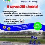 Plakat 3X R Rodzinny Rajd Rowerowy brzegiem Warty, 15 czerwca 2019r ( sobota)
