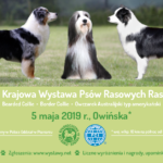 Plakat I Krajowa Wystawa Psów Rasowych Ras, 5 maja 2019, Owińska