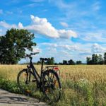 Rower na tle łąki
