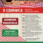 Plakat Wielkie Grilowanie, 9 czerwca 2019r, OSiR Błonie Kórnik