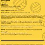 Plakat turnieju siatkówki plażowej w Lusowie na 3 sierpnia 2019