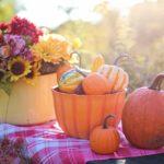 Zdjęcie owoców i kwiatów sezonowych