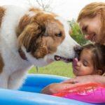 Plakat rodziny z psem z filmu