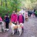 Uczetnicy akcji zbiórki dla psa Azorka