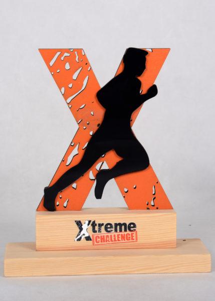 Podziękowanie za pomoc w podjęciu wyzwania Matki Natury - Xtreme Challenge statuetka