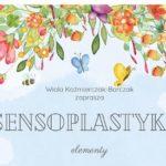 ilustacja kwiatów, motyli i pszczół z napisem sensoplastyka