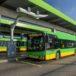 autobusy Solaris na pętli autobusowej