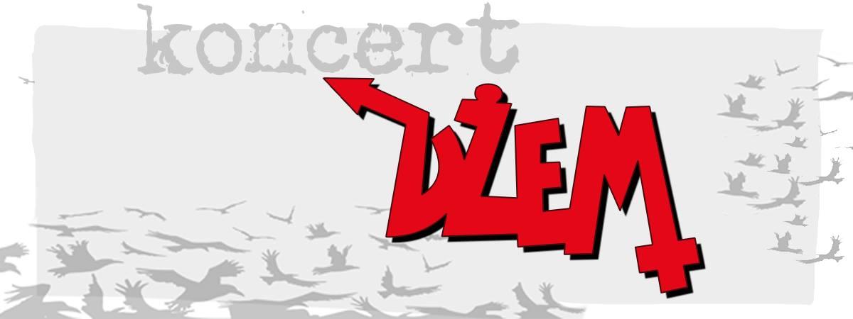 Czerwonak - koncert Dżem