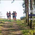 Zapowiedź biegu w lesie 18 kwietnia 2020 w Stęszewie, na zdjęciu grupa biegaczy wbiegających do lasu