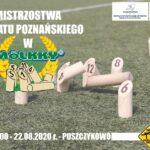plakat Mistrzostwa Powiatu Poznańskiego w Mölkky w Puszczykowie