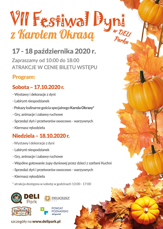 VII Festiwal Dyni