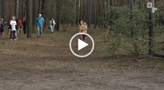 Biegacze w lesie podczas zawodów