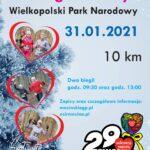 plakat 7 bieg zimowy
