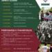 Program obchodów stulecia harcerstwa w Mosinie