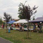 festiwal kulinarny w kostrzynie