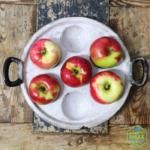 smaki powiatu warzywa i owoce