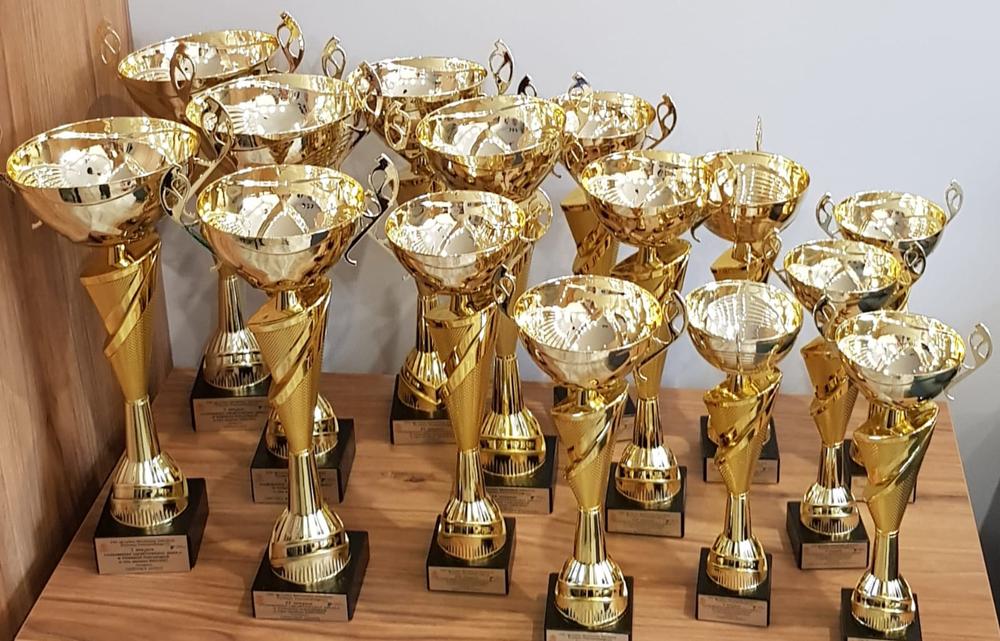 Puchary za współzawodnictwo szkolne