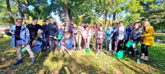 sadzenie drzew w owińskach